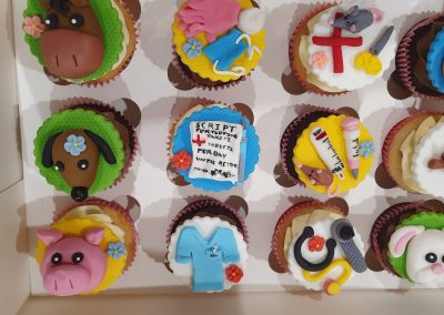 custom kids cupcakes 1 MEDICAL THEME PARTY